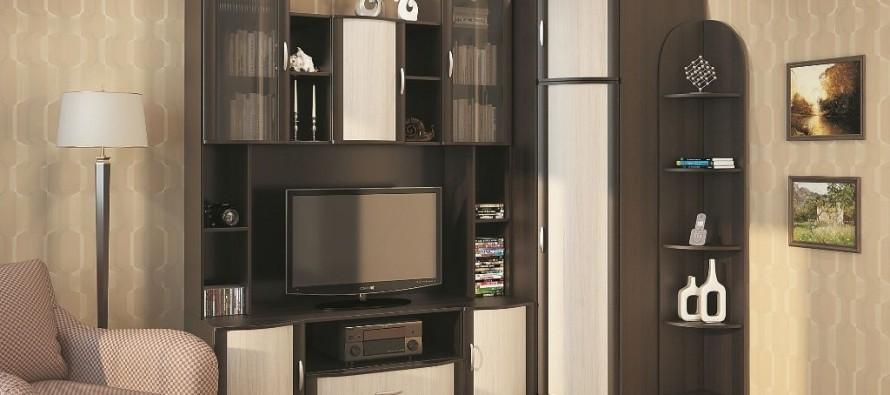 Модульная мебель для гостиной с угловым шкафом в интерьере квартиры