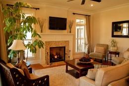 Электрические камины в гостиной — особенности устройства и варианты дизайна