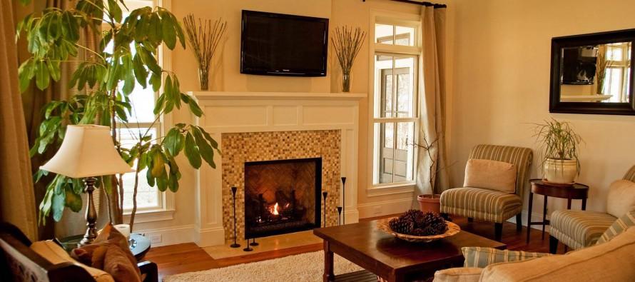 Фото электрокамина в интерьере гостиной в доме