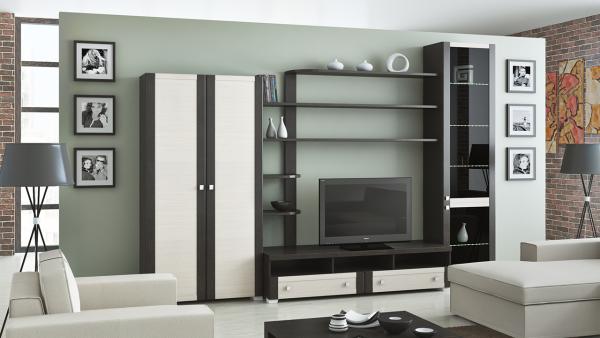 Фото корпусной мебели для гостиной в современном стиле