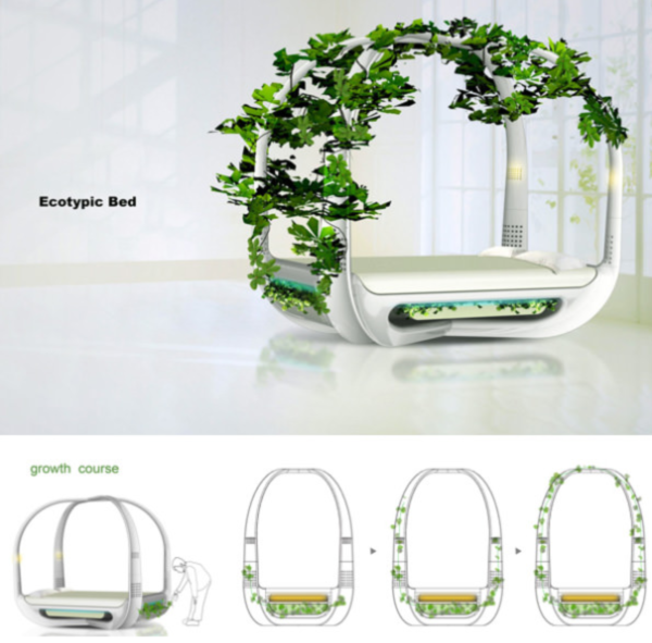 Новое поколение экологически чистых кроватей