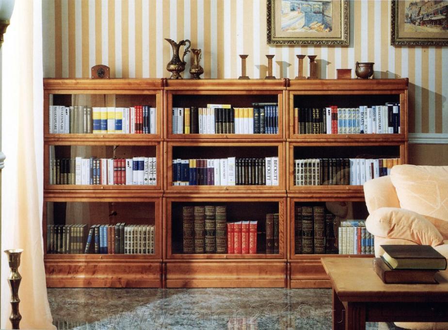 Книжный шкаф из массива дерева, основные характеристики моде.