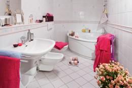 Стоит ли приобретать и устанавливать в туалете или ванной комнате биде?